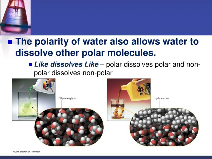 The polarity of water also allows water to dissolve other polar molecules.