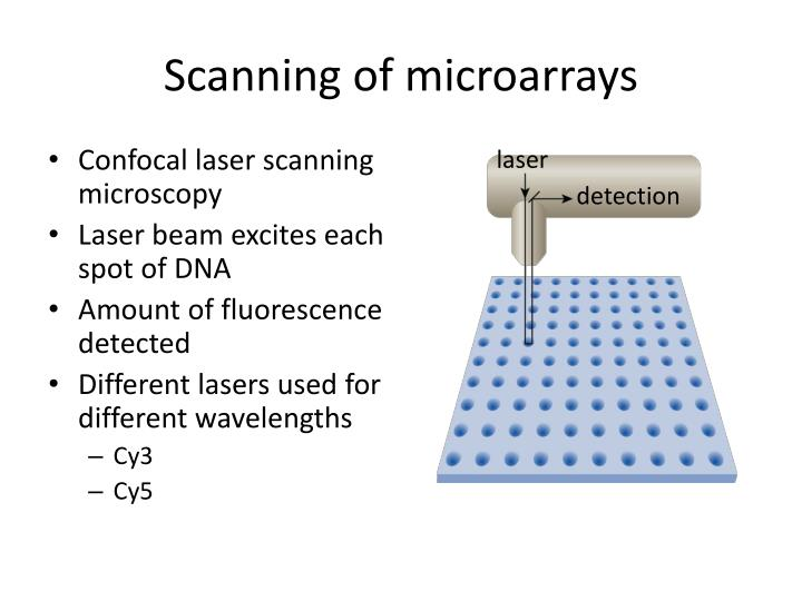 Scanning of microarrays