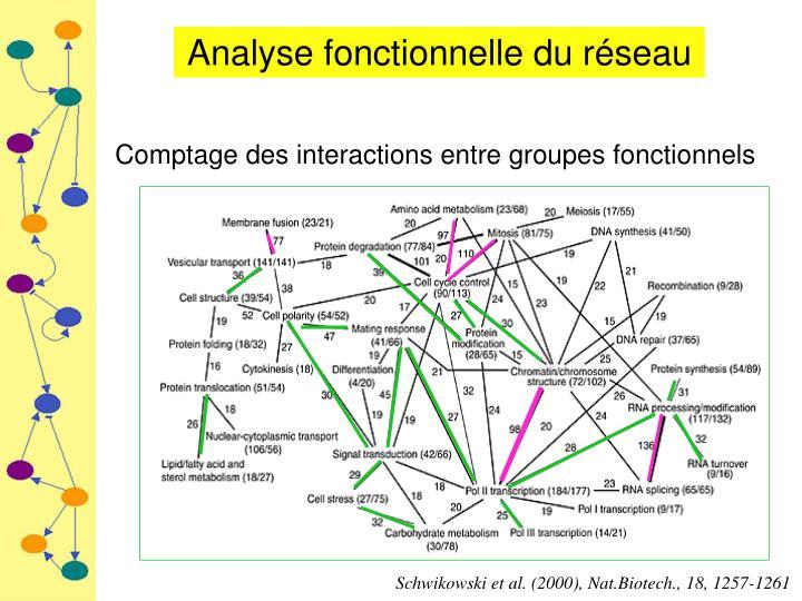 Analyse fonctionnelle du réseau