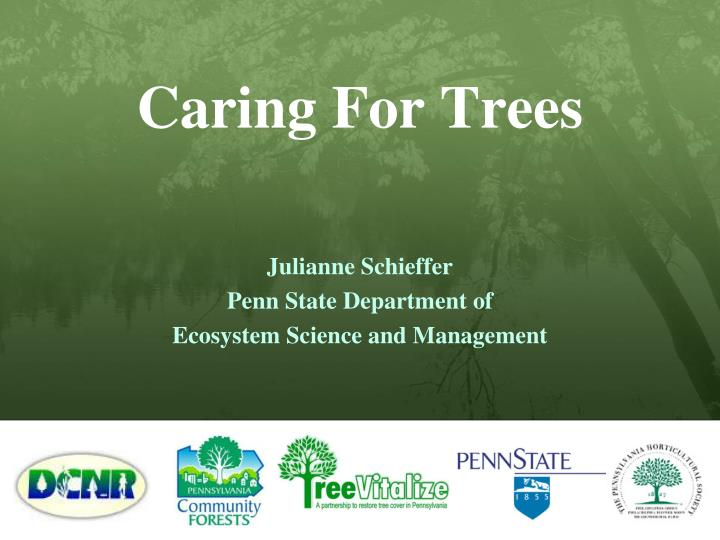 Caring for trees