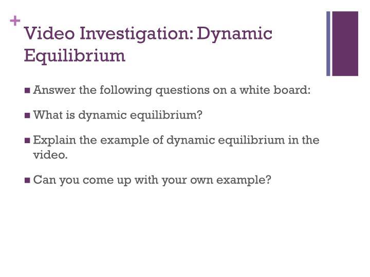 Video Investigation: Dynamic Equilibrium