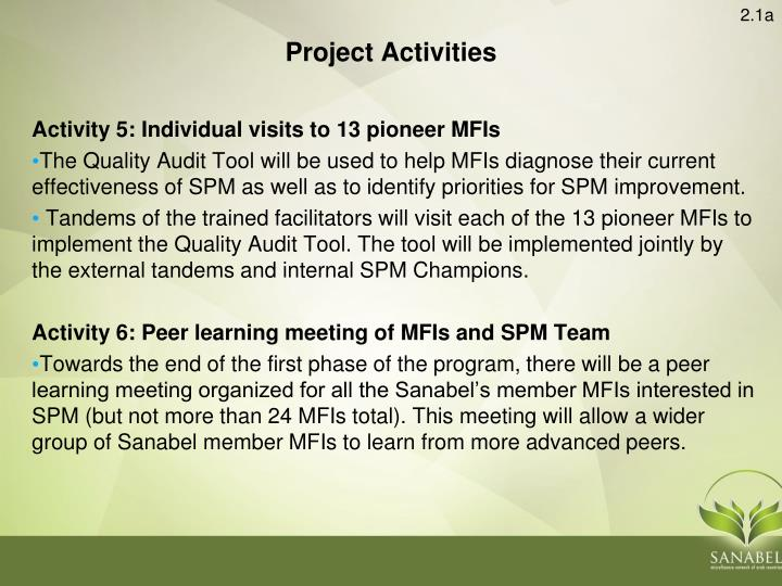 Activity 5: Individual visits to 13 pioneer MFIs