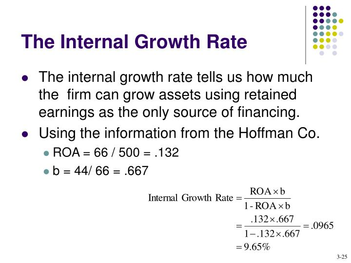 The Internal Growth Rate