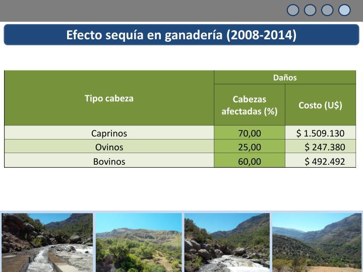 Efecto sequía en ganadería (2008-2014)