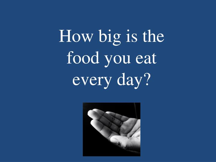 How big is the food you eat every day?