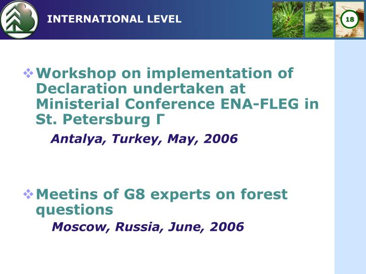 Workshop on implementation of Declaration undertaken at Ministerial Conference ENA-FLEG in St. Petersburg