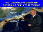 the tohoku quake tsunami the result of plate tectonics
