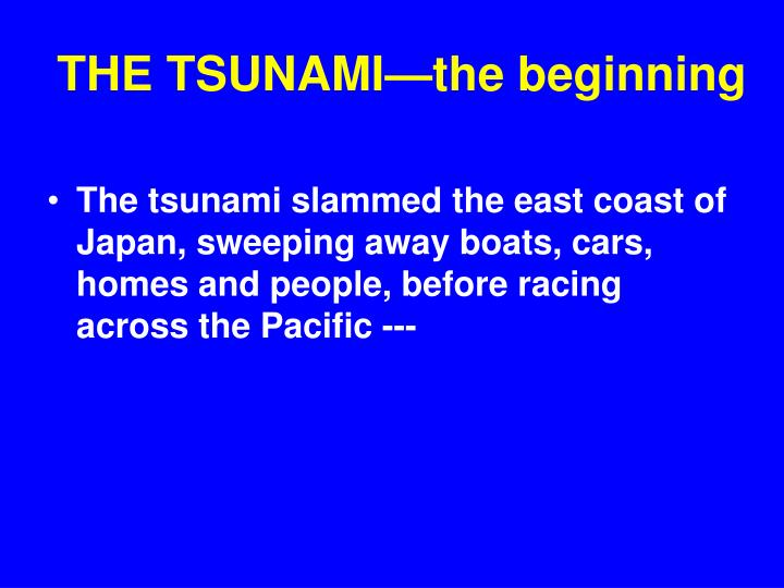THE TSUNAMI—the beginning