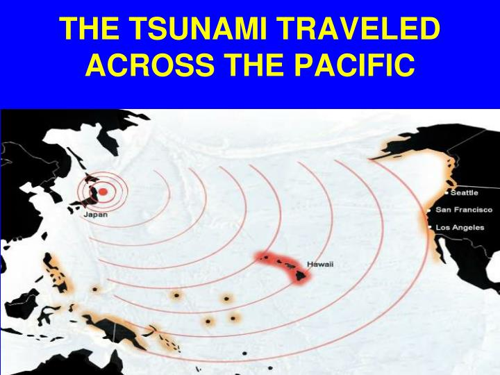 THE TSUNAMI TRAVELED  ACROSS THE PACIFIC