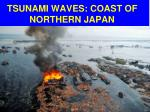 tsunami waves coast of northern japan