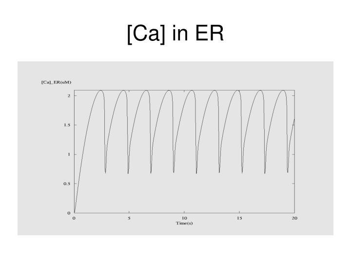 [Ca] in ER