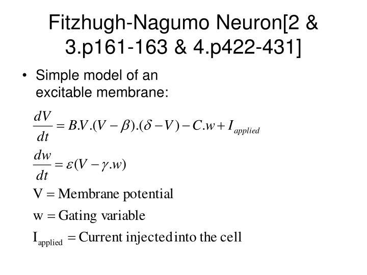 Fitzhugh-Nagumo Neuron[2 & 3.p161-163 & 4.p422-431]