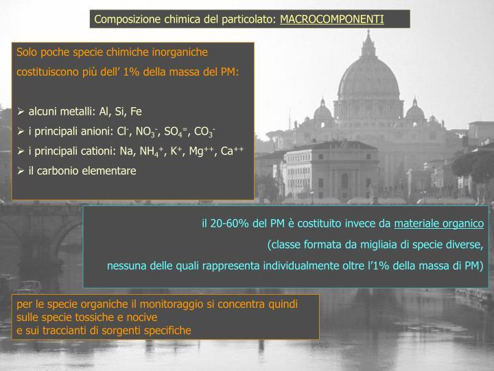 Composizione chimica del particolato: