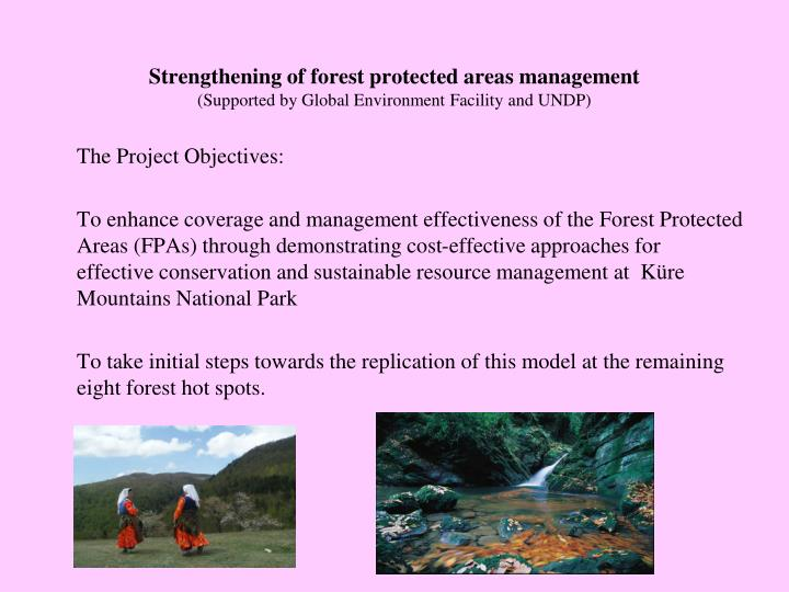 Strengthening of forest protected areas management