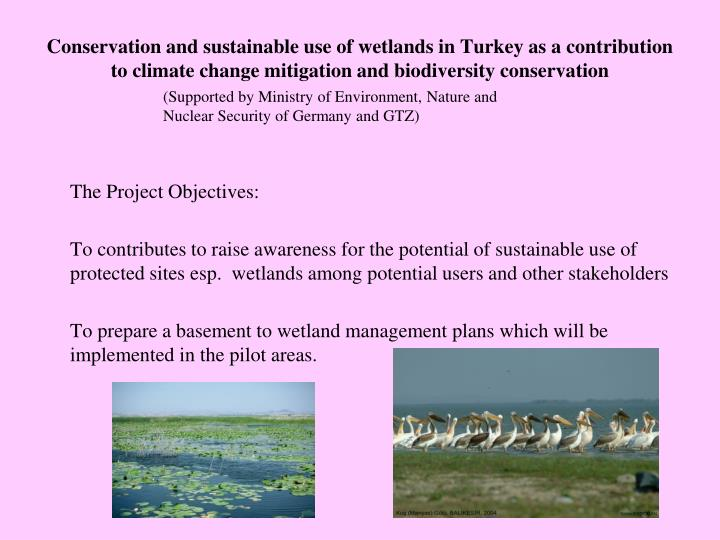 Conservation and sustainable use of wetlands in Turkey as a contribution to climate change mitigation and biodiversity conservation