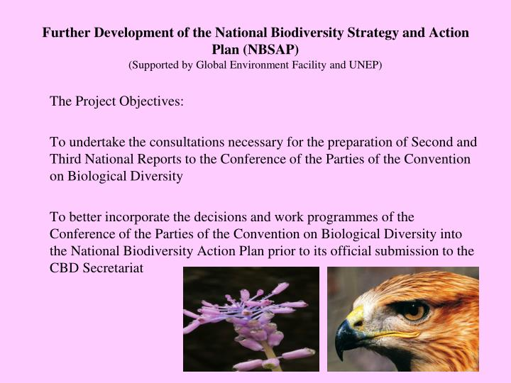 Further Development of the National Biodiversity Strategy and Action Plan (NBSAP)