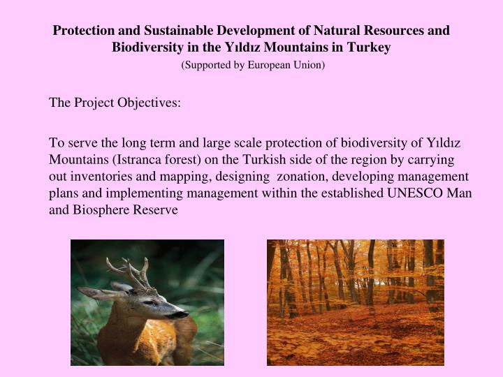 Protection and Sustainable Development of Natural Resources and Biodiversity in the Y
