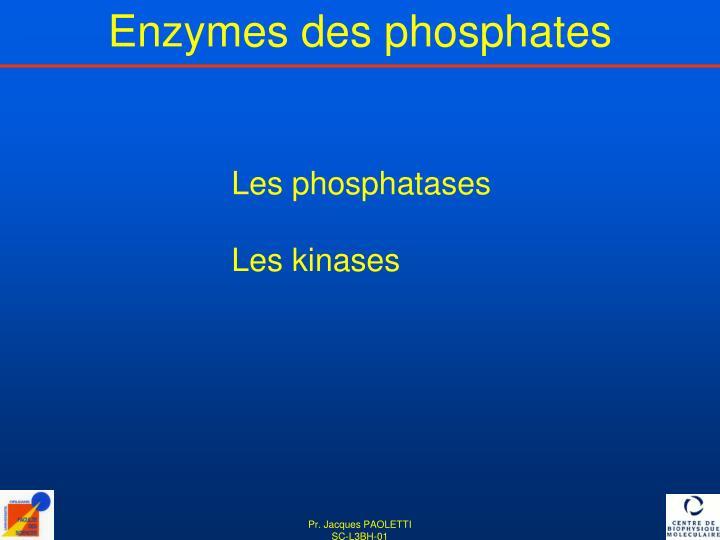 Enzymes des phosphates