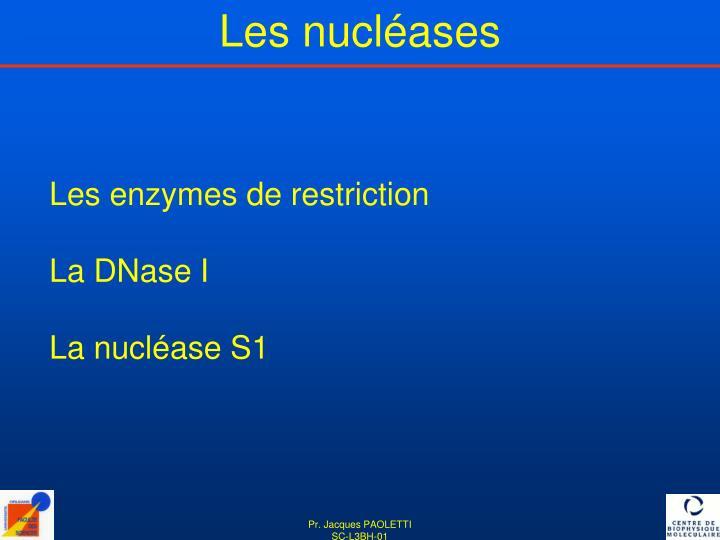 Les nucléases