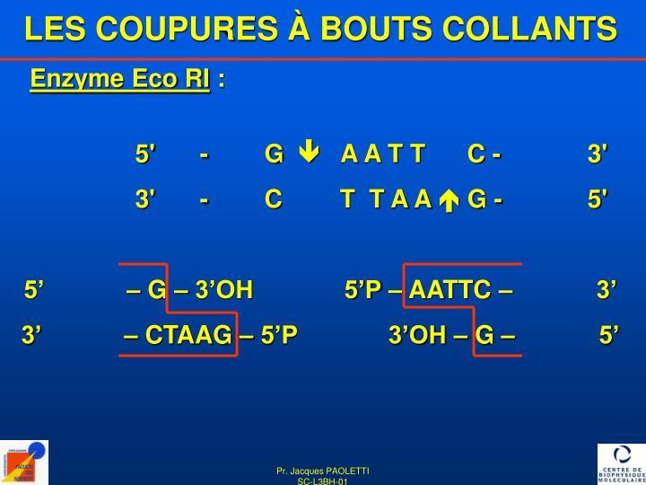 LES COUPURES À BOUTS COLLANTS