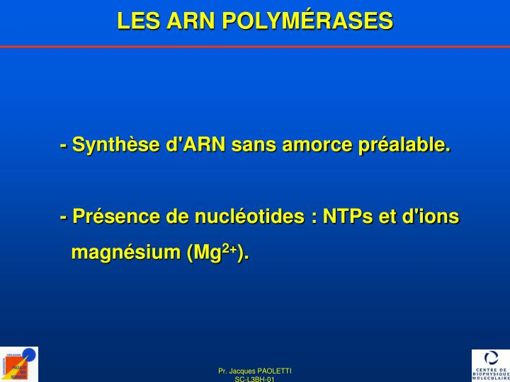 LES ARN POLYMÉRASES