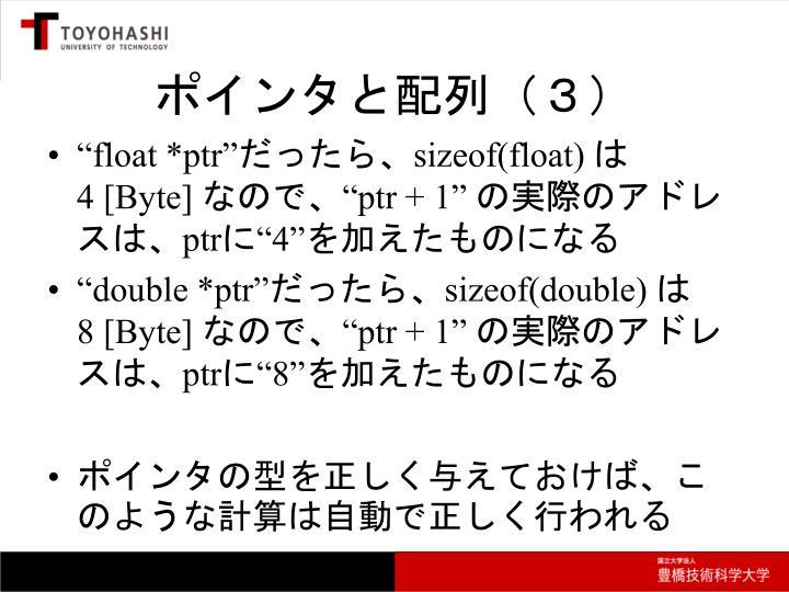 ポインタと配列(3)