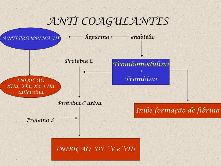 ANTI COAGULANTES