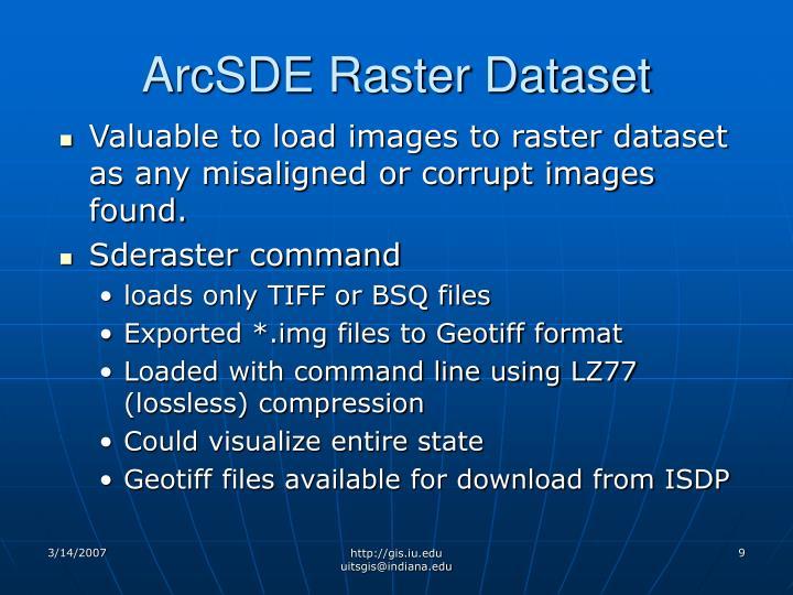 ArcSDE Raster Dataset