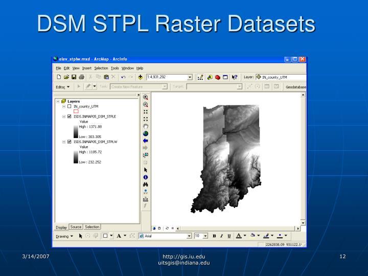 DSM STPL Raster Datasets