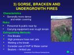 3 gorse bracken and undergrowth fires