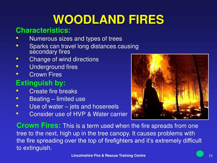 WOODLAND FIRES