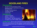 woodland fires