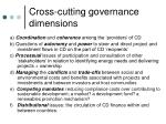 cross cutting governance dimensions