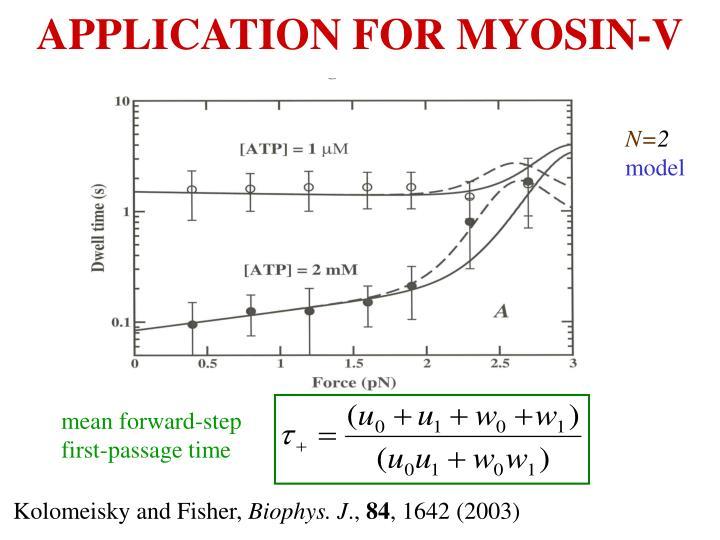 APPLICATION FOR MYOSIN-V