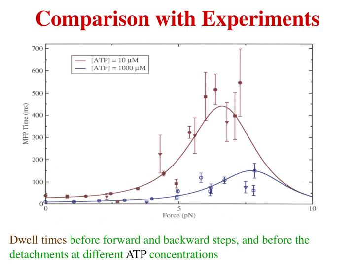 Comparison with Experiments