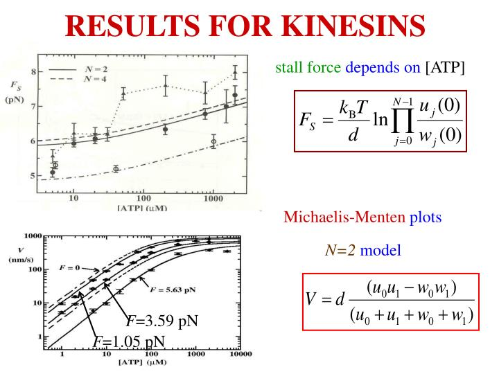 RESULTS FOR KINESINS