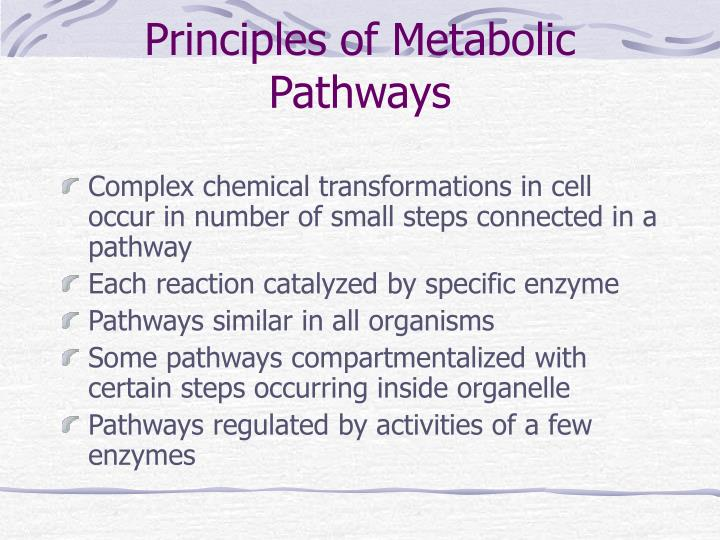 Principles of metabolic pathways