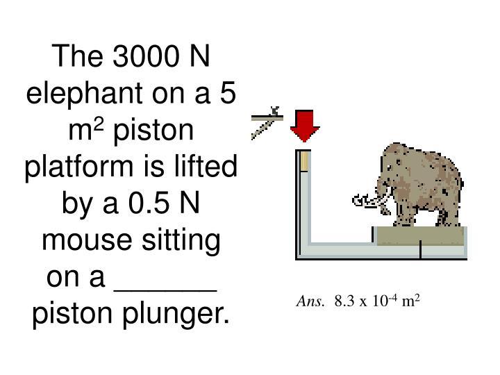The 3000 N elephant on a 5 m