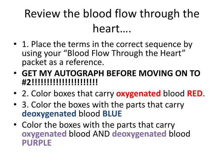Review the blood flow through the heart….