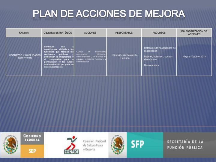 PLAN DE ACCIONES DE MEJORA