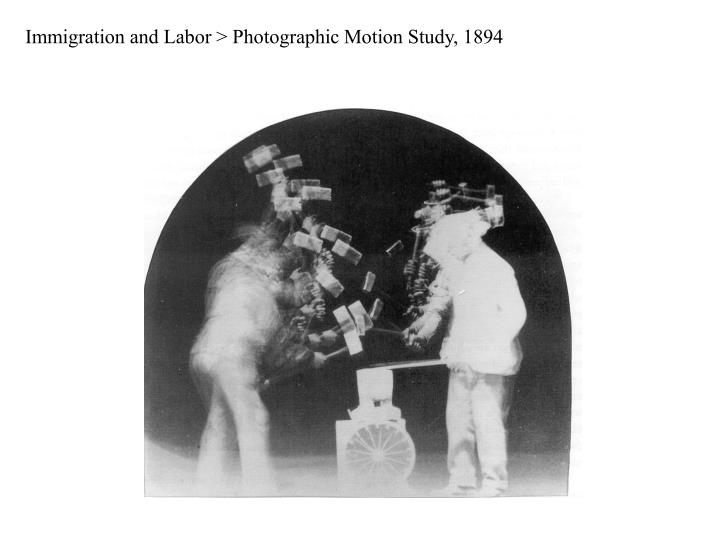 Immigration and Labor > Photographic Motion Study, 1894