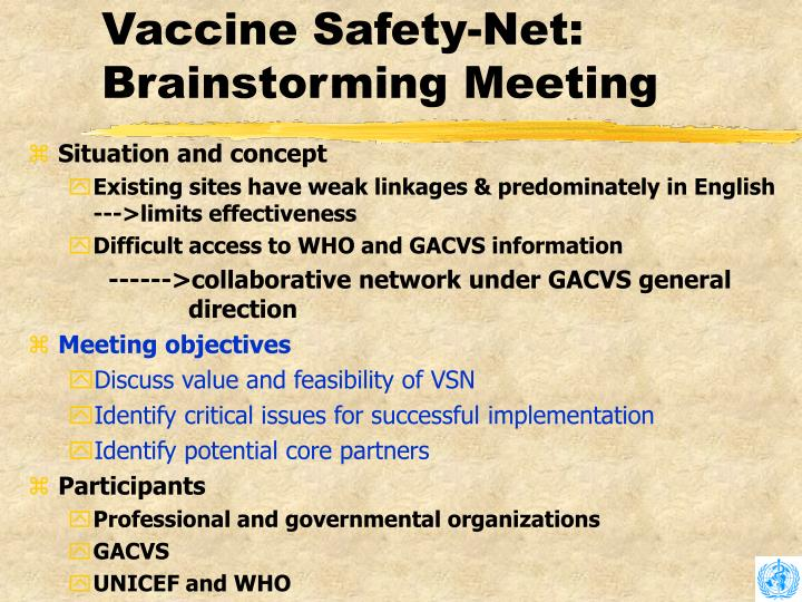 Vaccine Safety-Net: Brainstorming Meeting