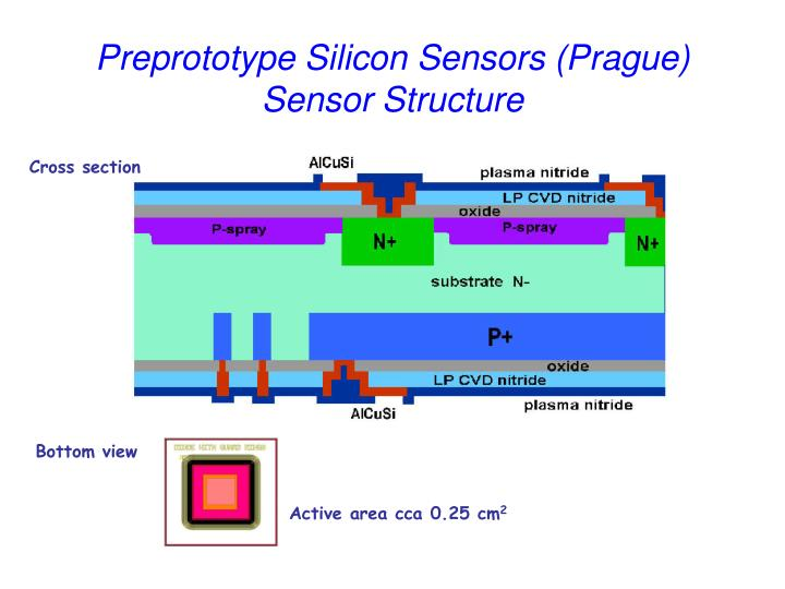 Preprototype Silicon Sensors (Prague)