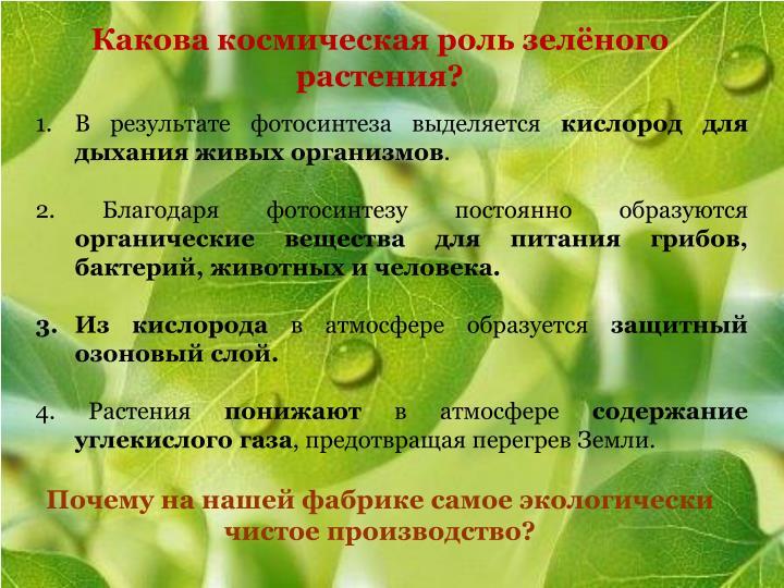Какова космическая роль зелёного растения?
