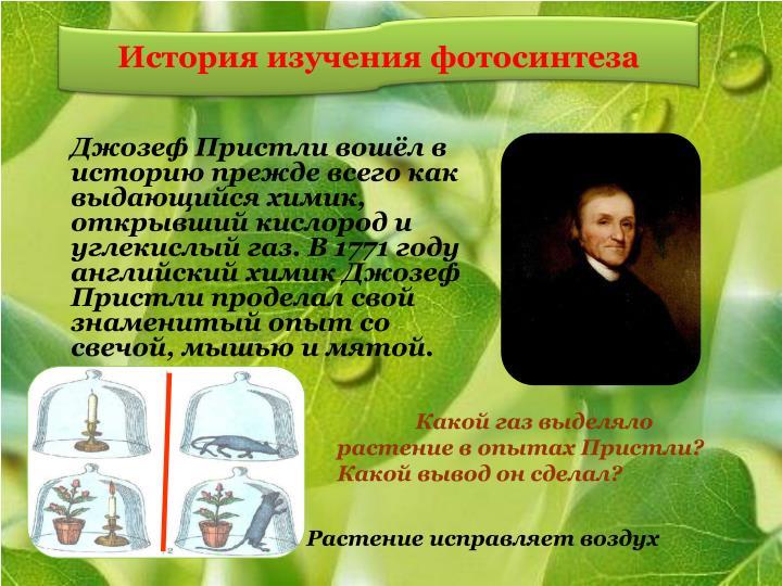 История изучения фотосинтеза