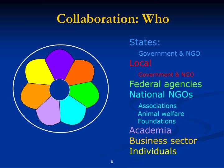Collaboration: Who