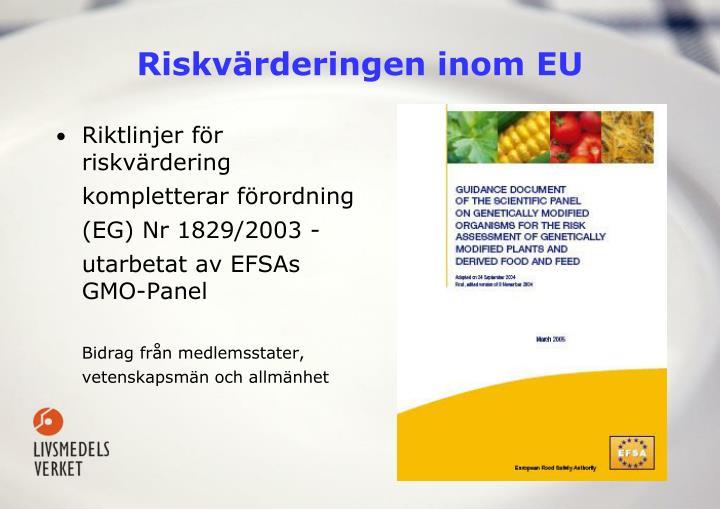 Riskvärderingen inom EU