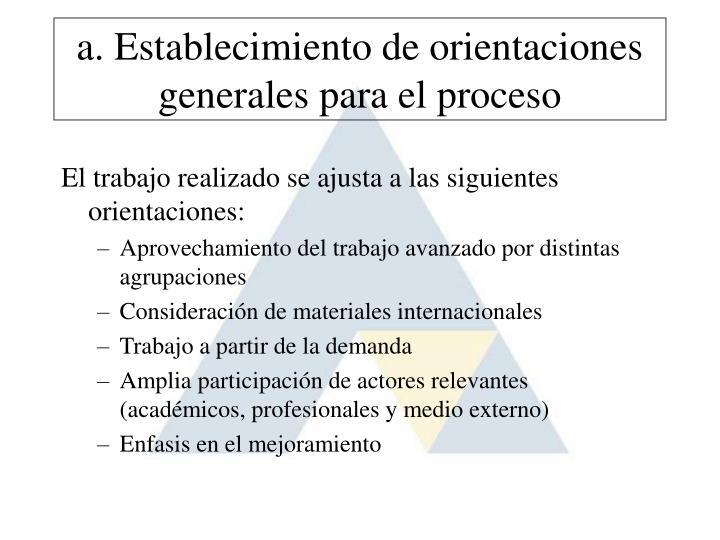 a. Establecimiento de orientaciones generales para el proceso