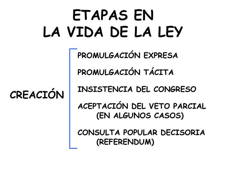ETAPAS EN