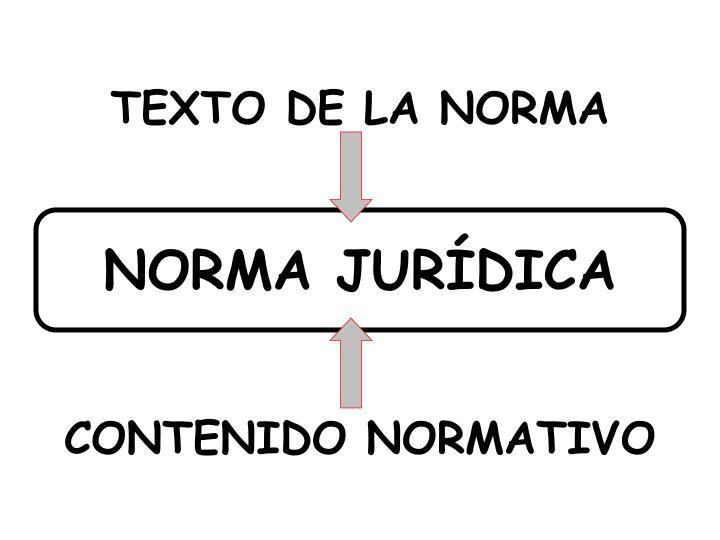TEXTO DE LA NORMA